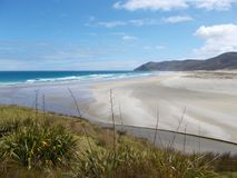 View from grass dune on Sand Beach with pacific ocean waves on North Island in New Zealand Royalty Free Stock Images