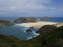 View from grass dune on Sand Beach with pacific ocean waves on North Island in New Zealand Stock Photography