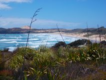 View from grass dune on Sand Beach with pacific ocean waves on North Island in New Zealand Stock Photo