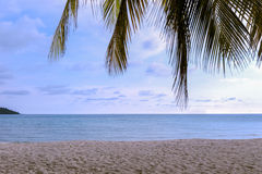 Sand Beach with Coconut tree Stock Photos