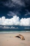 Sand beach and dark blue sky Stock Photos