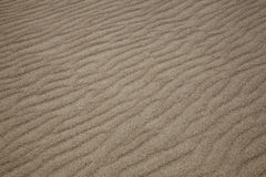 Sand on the beach Stock Images