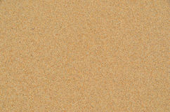 Sand on the beach detail photo texture Royalty Free Stock Photo