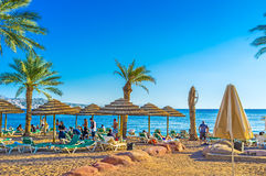 The sand beach in Eilat. EILAT, ISRAEL - FEBRUARY 23, 2016: The best way to relax in Eilat is to visit local beach and to swim, on February 23 in Eilat Stock Photography