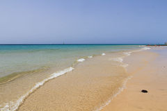 Sand beach in Fuerteventura stock image