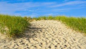 Sand, Beach, Grass Cape Cod New England Stock Photos