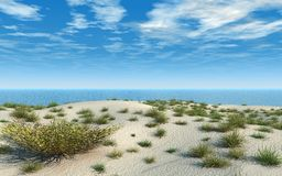 Sand Beach With Grasses. Sand beach has soft mounds and many clumps of wild grass. Blue sea and summer sky. 3D illustration Stock Photos