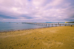 sand beach and jetty in a ocean bay Stock Images