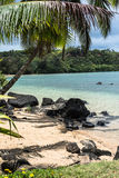 Sand beach in Kauai, Hawaii Royalty Free Stock Images
