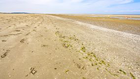 Sand beach of Le Touquet after ebb tide. Travel to France - sand beach of Le Touquet after ebb tide (Le Touquet-Paris-Plage) on coast of English Channel Royalty Free Stock Image