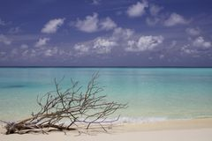 Sand Beach Maldives Royalty Free Stock Image