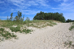 Sand beach near by of the Baltic Sea. Royalty Free Stock Image