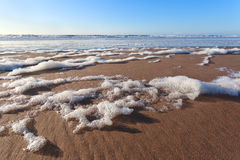 Sand beach on north sea and blue sky Royalty Free Stock Image