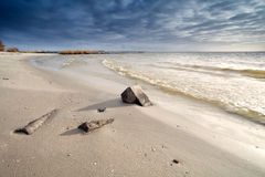 Sand beach on North sea Stock Image