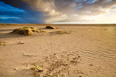 Sand beach by North sea in Netherlands Stock Images