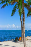 Sand beach with palm trees and beach chairs. Tropical white sand beach with palm trees and beach chairs Stock Photography