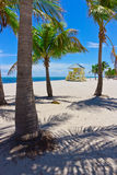 Sand beach with palm trees and lifegard tower Royalty Free Stock Photo