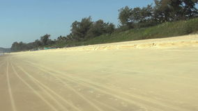 Sand beach with palm trees. At sunny day stock footage