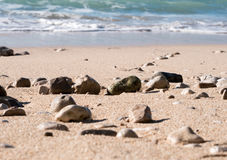 Sand beach with small rocks coastline Royalty Free Stock Images