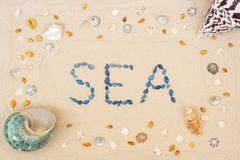 Sand on the beach in summer, the inscription sea from the shells on the sand. Flat lay. Top view stock photos
