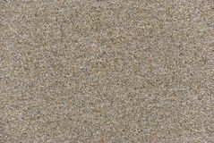 Sand at the beach texture Stock Photography