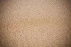 Sand beach texture close up Stock Photo