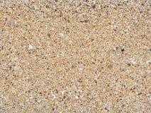 Sand beach texture. Grain of sand beach texture Stock Photography