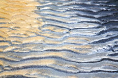 sand in the beach   thailand kho tao    south china sea Royalty Free Stock Photos