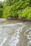 Beach Manuel Antonio Costa Rica royalty free stock image