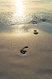 Sand beach, wave and footsteps at sunset Royalty Free Stock Images