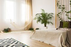 Sand bedroom with rope wall. Modern carpet and plant stock images