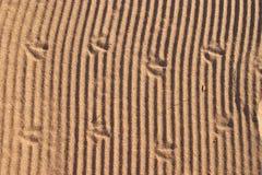 Sand-Beschaffenheit Lizenzfreies Stockbild