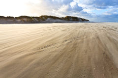 Sand Blowing Over The Beach Royalty Free Stock Photography