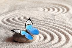 Sand, blue butterfly and spa stone in zen garden. Spa concept. Sand, blue butterfly and spa stone in zen garden. Spa concept royalty free stock images