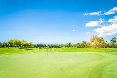 A green grass in Golf Course Stock Photography