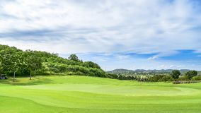 A green grass in Golf Course royalty free stock images