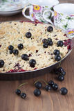 Sand cake with black currant Stock Photo