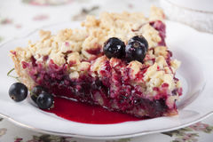 Sand cake with black currant. Royalty Free Stock Image
