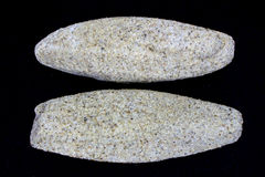 Sand Calcite. Calcite Crystals with sand inclusions. Also known as crystallised sandstone and siliceous calcite Royalty Free Stock Image