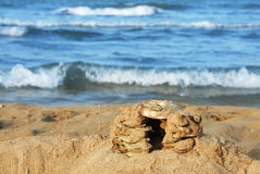 Sand Castle Royalty Free Stock Image