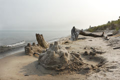 Sand Castle and Driftwood on a Lake Huron Beach Stock Image