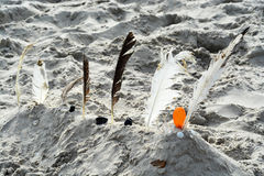 Sand castle made by children at the beach with sand and white and black feathers of gulls Stock Image
