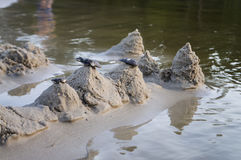 Sand castles on the bank of river. Mild background with pastel colors and reflections in the water Stock Photography