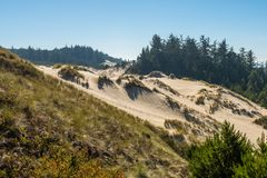 The sand and coastline from a high point of view over the Oregon dunes royalty free stock image