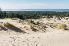 The sand and coastline from a high point of view over the Oregon dunes stock photos