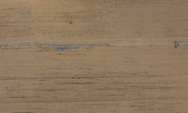 Sand colored wood texture. Sand Yellow colored wood texture. Abstract background Stock Photography