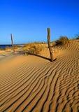Sand-Dünen Stockbilder