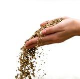 Sand in den weiblichen Händen stockfoto