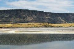 Sand deposits and algae at the shores of Lake Magadi. Sand deposits and colorful algae at the shores of lake magadi against a mountain background, magadi, rift royalty free stock photos