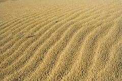 Sand and desert Stock Photography